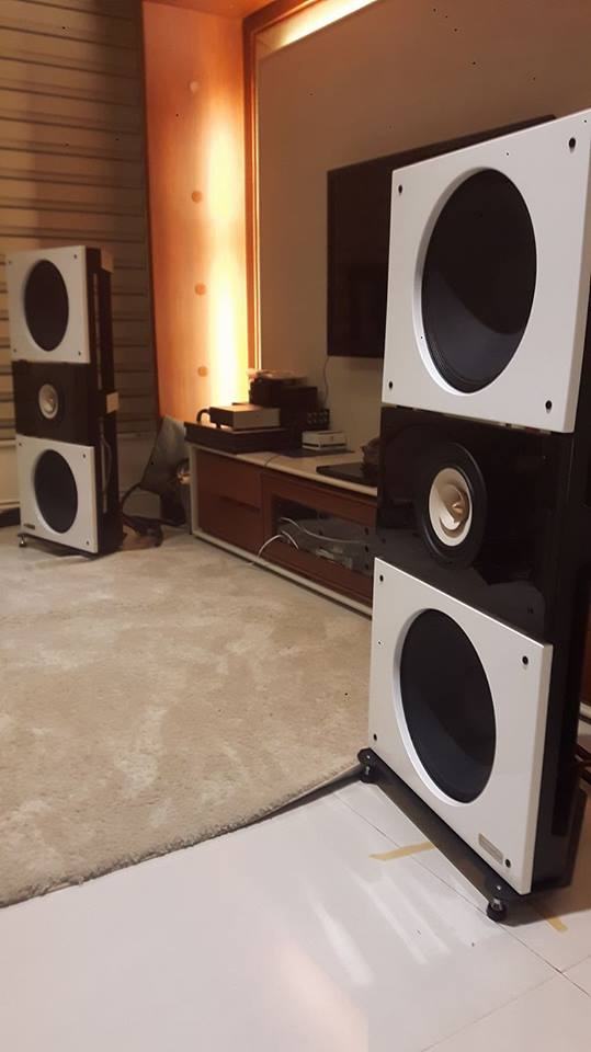 trio15tb-neo-open-baffle-speakers-by-pureaudioproject-tl-t-3
